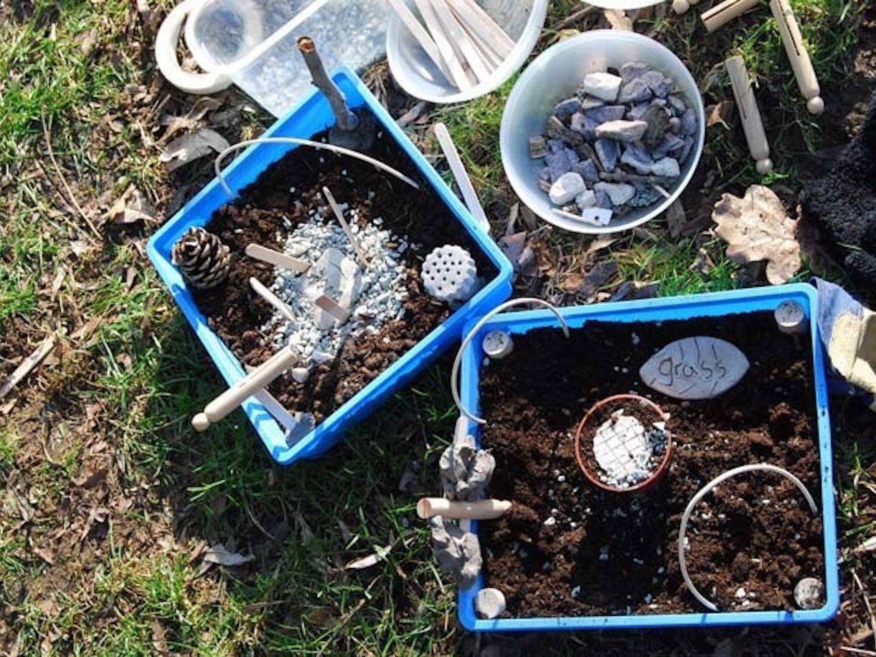 Minibeast gardens
