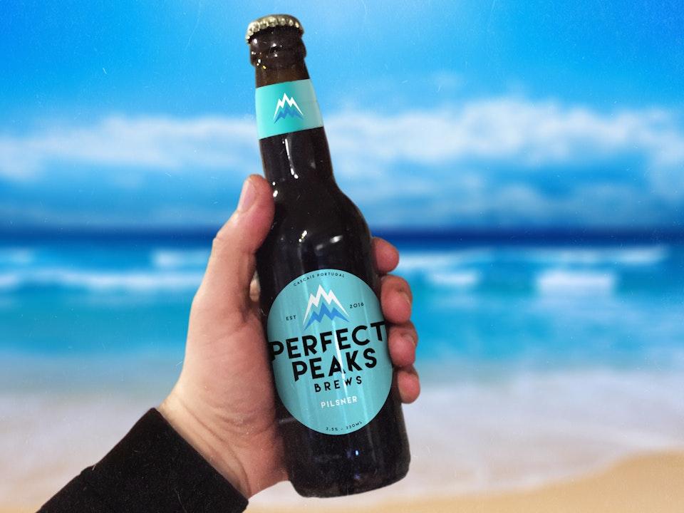 Logo Design & Branding PerfectPeaks