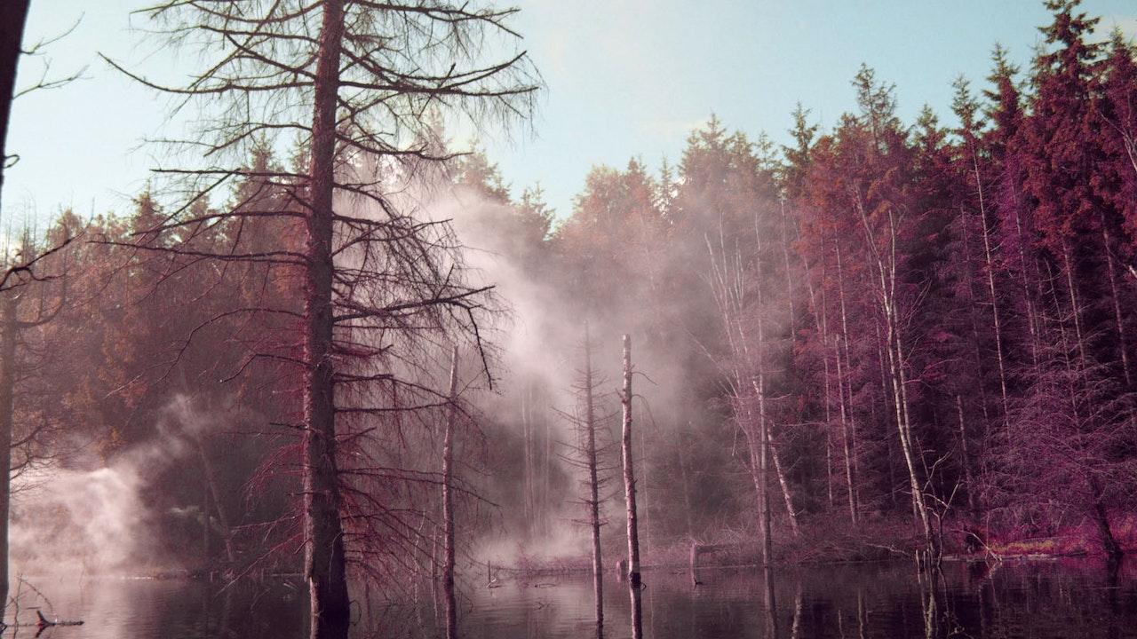 Naughty Boy ft Emeli Sandé / Wonder -