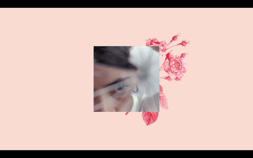 Screen Shot 2019-01-15 at 17.41.35 -