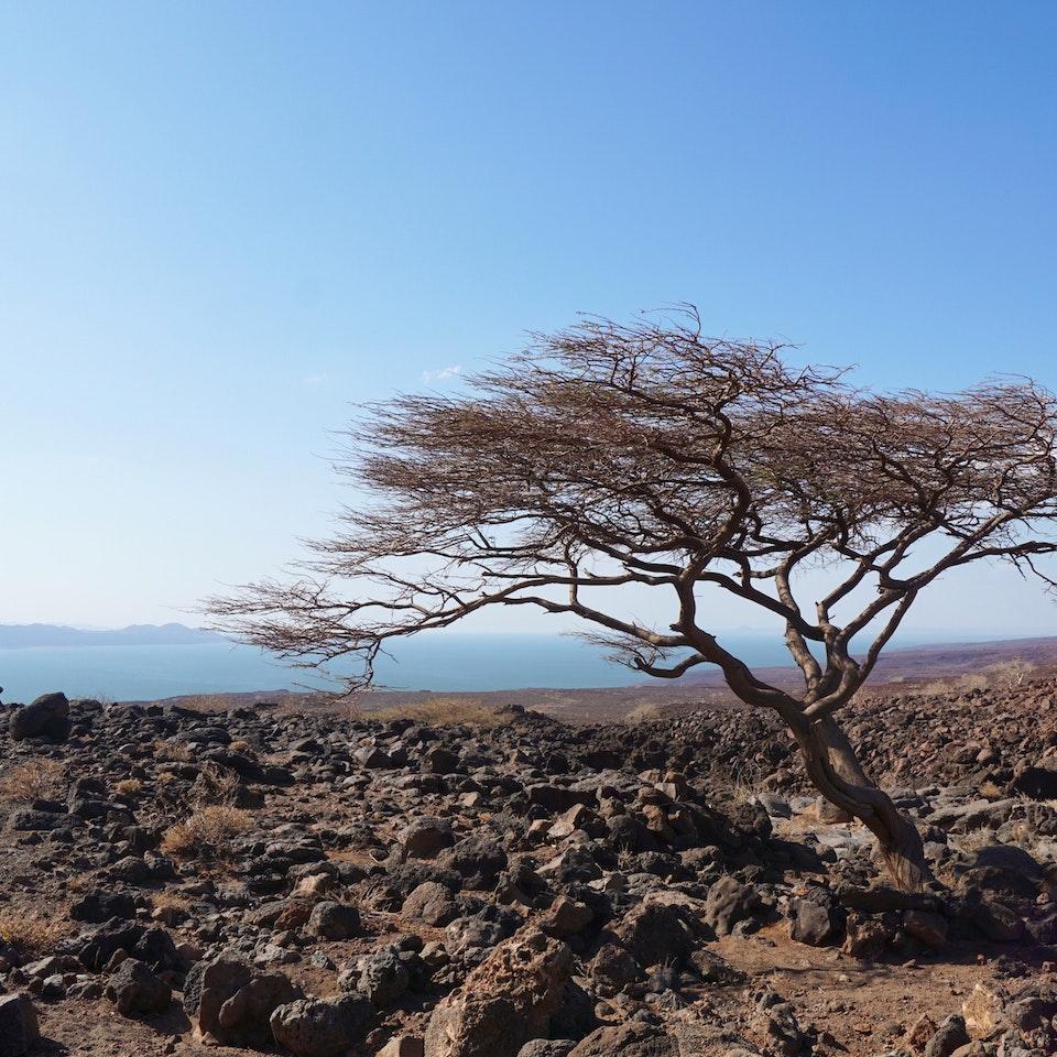 Lake Turkana Wind Power Lake Turkana