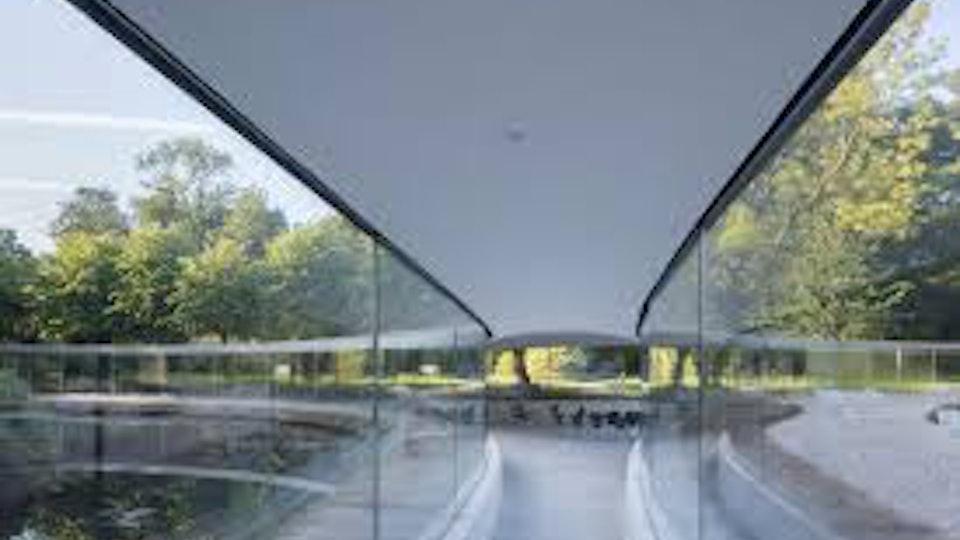 Hemelsleutel, park Vijversburg -