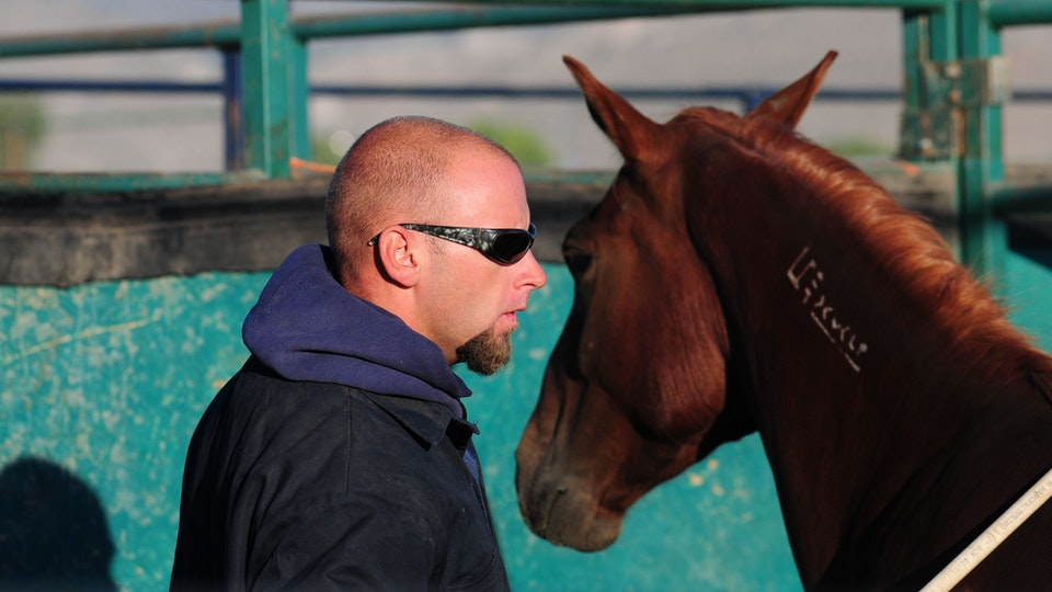 Among Horses and Men, documentary 70 min - Chris at the first day if the wild horses training