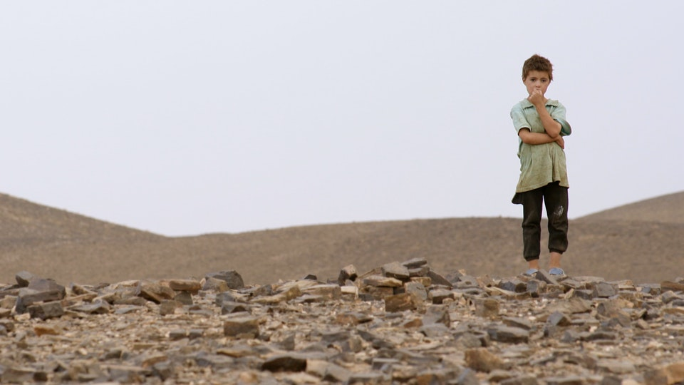 THE MIRACLE OF THE LITTLE PRINCE, after IDFA, HOTDOCS, Film Forum NY, has won a golden calf for the editing and was nominated as the best long documentary 2019 -
