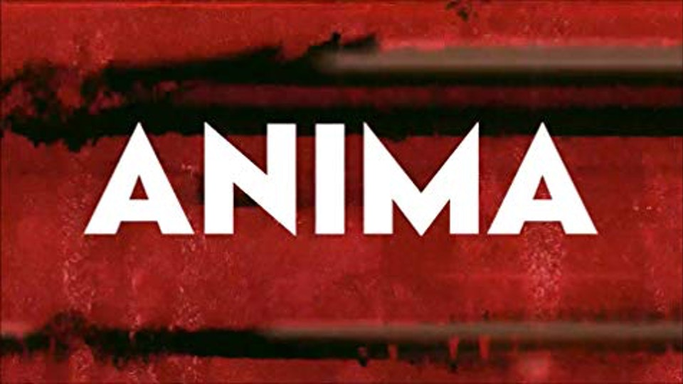 BUG Videos - The Evolution of Music Video - ANIMA