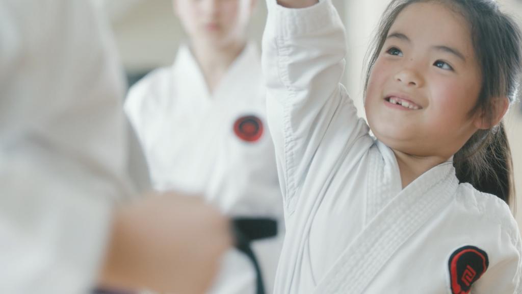 Vanish Karate