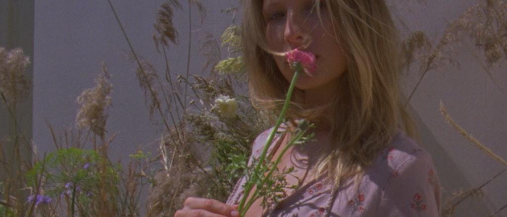 She Made Me - Wild Flower