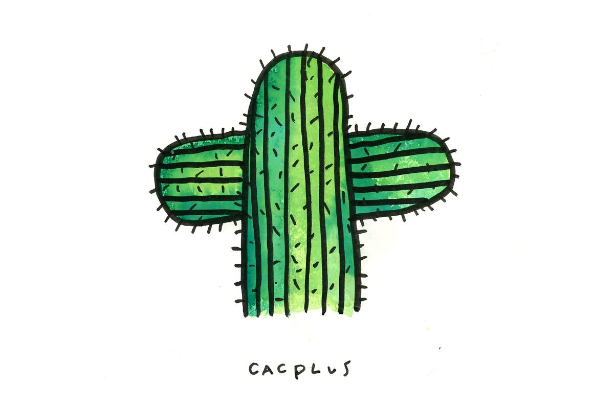 cacplus