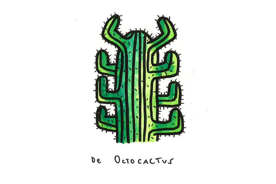 octocactus