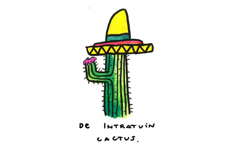 intratuin_cactus14
