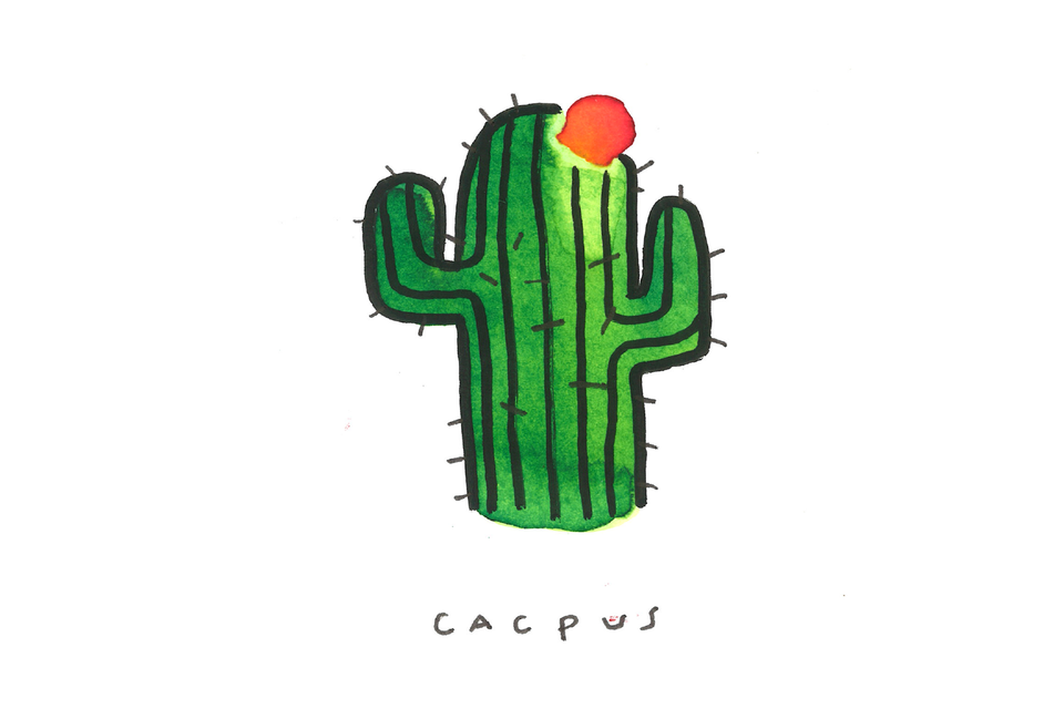 cacpus
