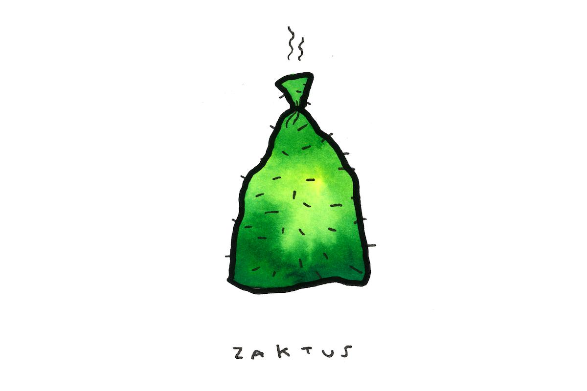 zaktus
