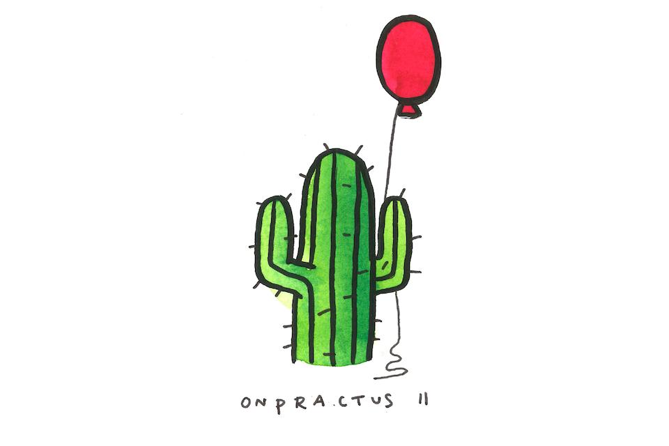 onpractus2