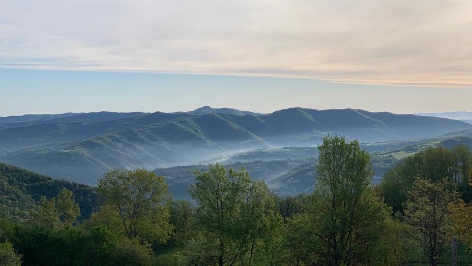 abitare il selvatico: estratti dal diario di Pianpicollo