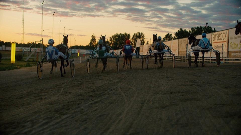 ATG Horses