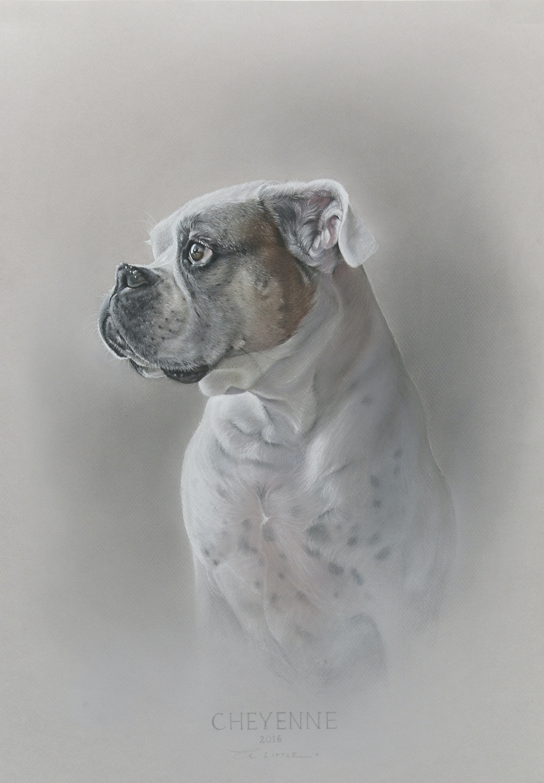 Amy Little Art - Cheyenne, 2016