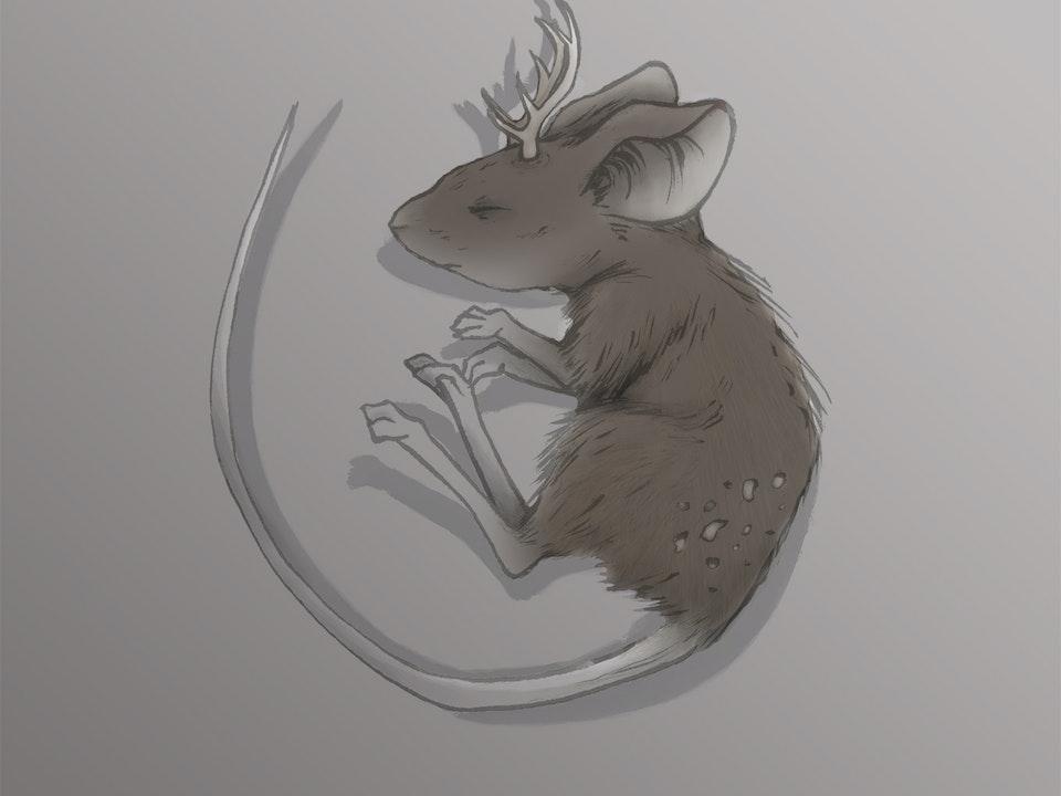 """Illustration - """"Deer Mouse"""" 2015. Ink & Digital."""