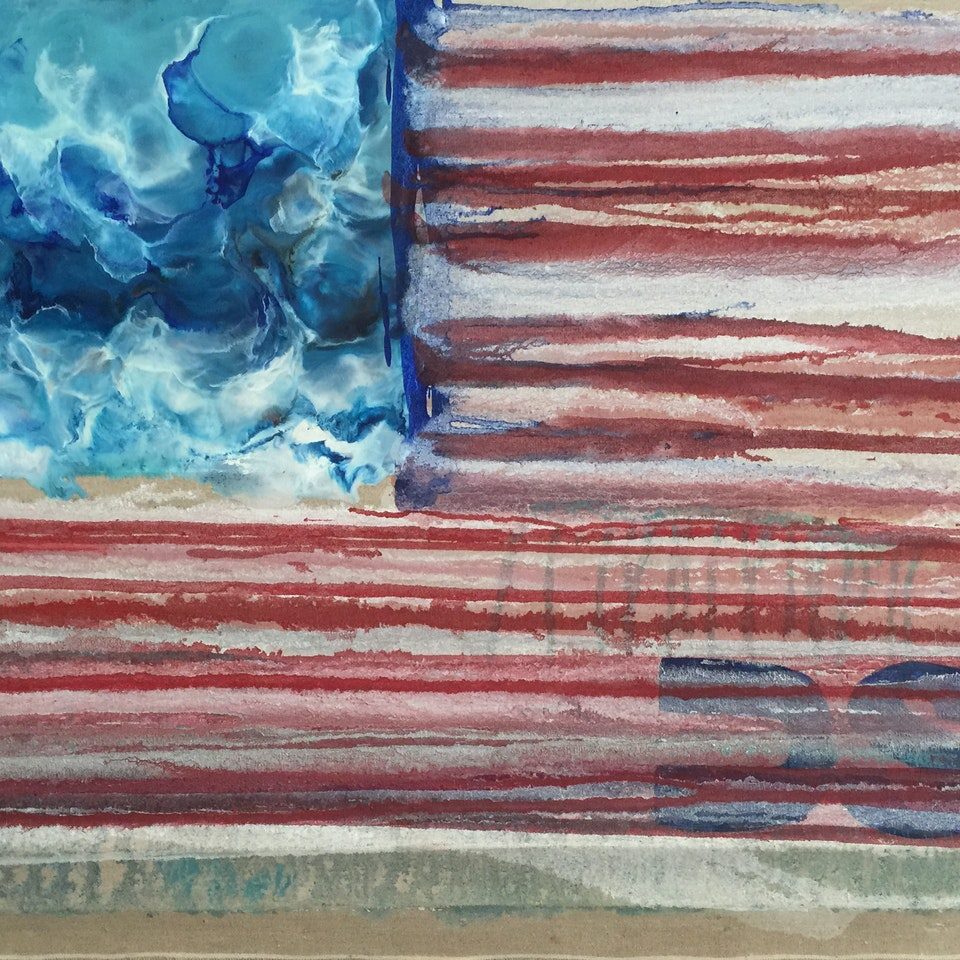 Oil and Encaustic on Linen Divided States of America