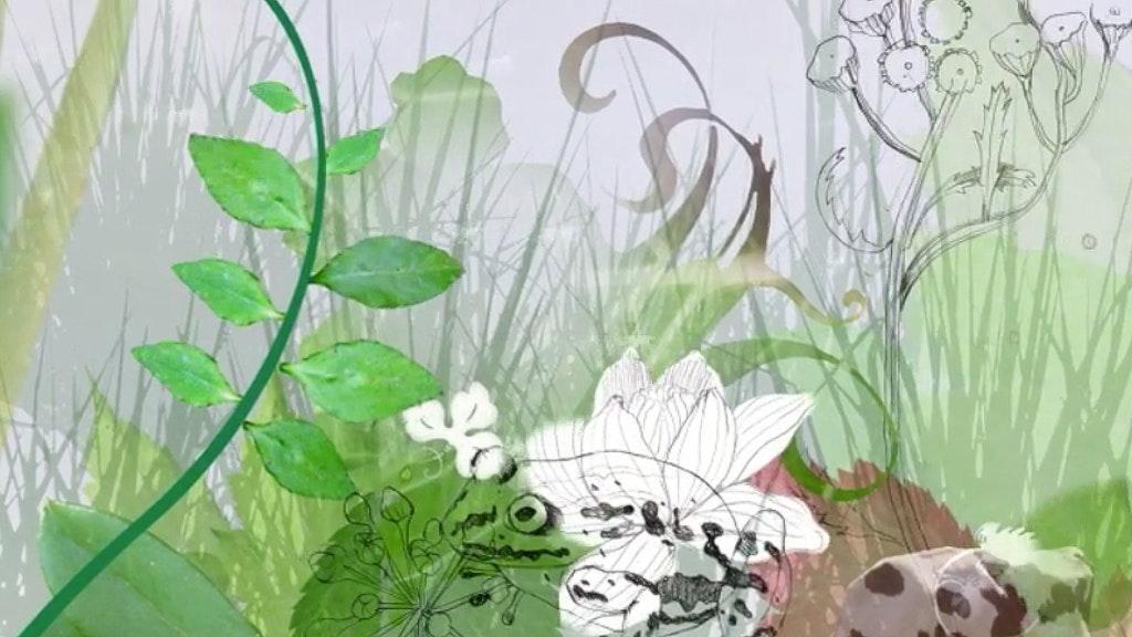 Animation for Groene Hart
