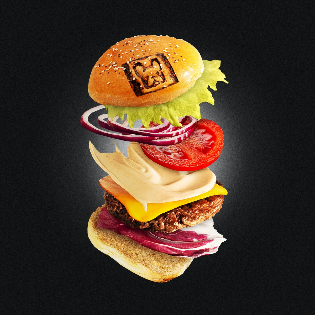 Flying Burger! Come l'ho realizzato?