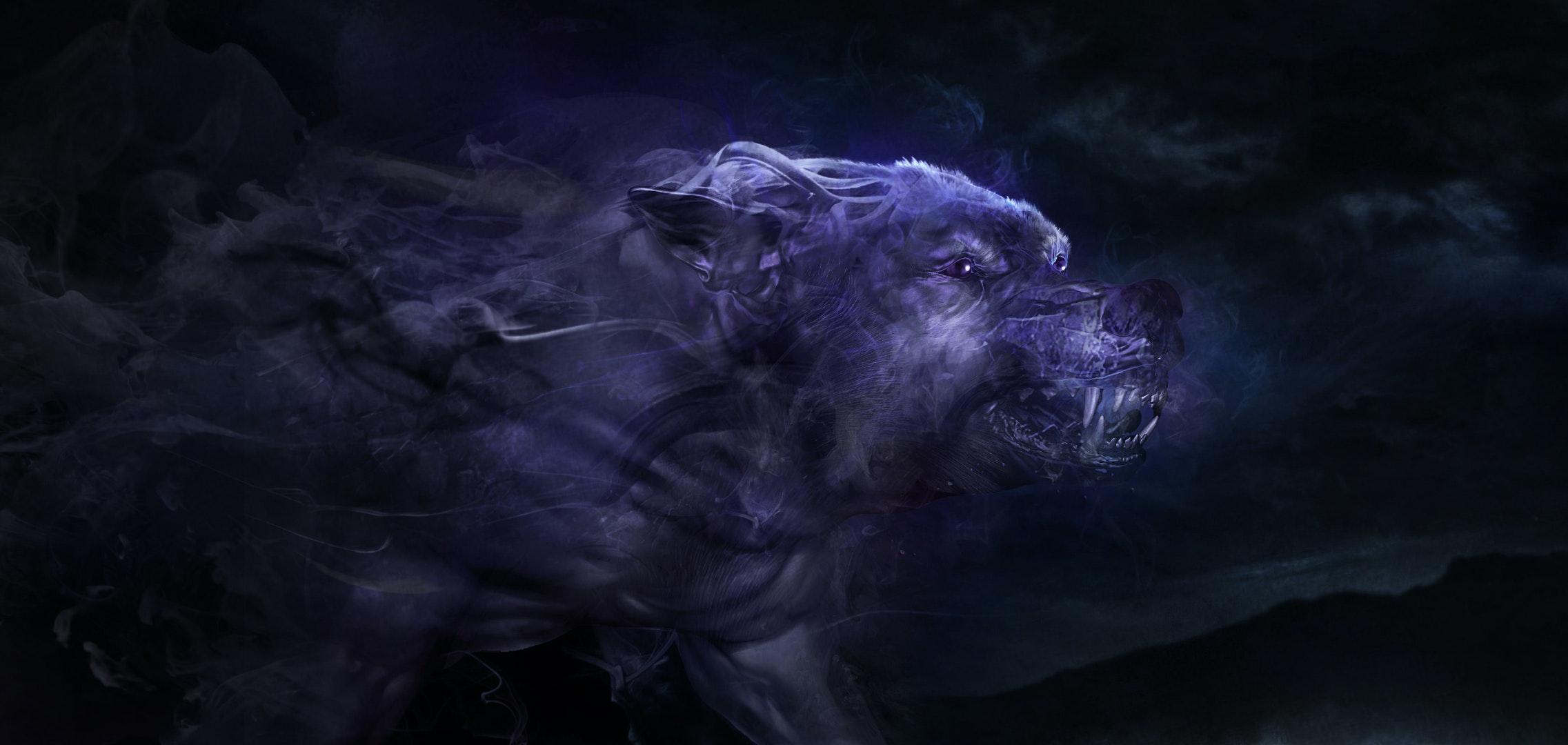 VINICIUS NALDI - Europe_Wolf_Frame1_V15