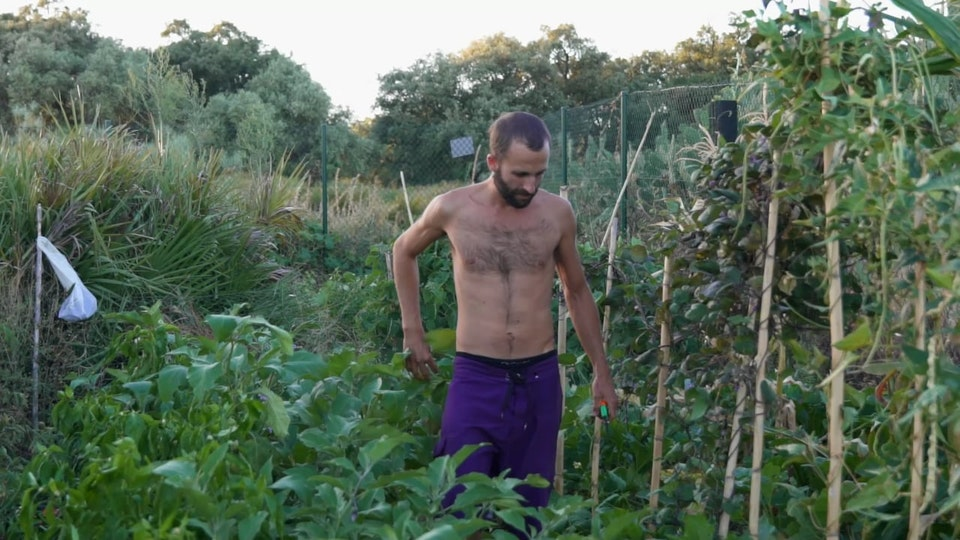 Emilio 'Garden Therapy'