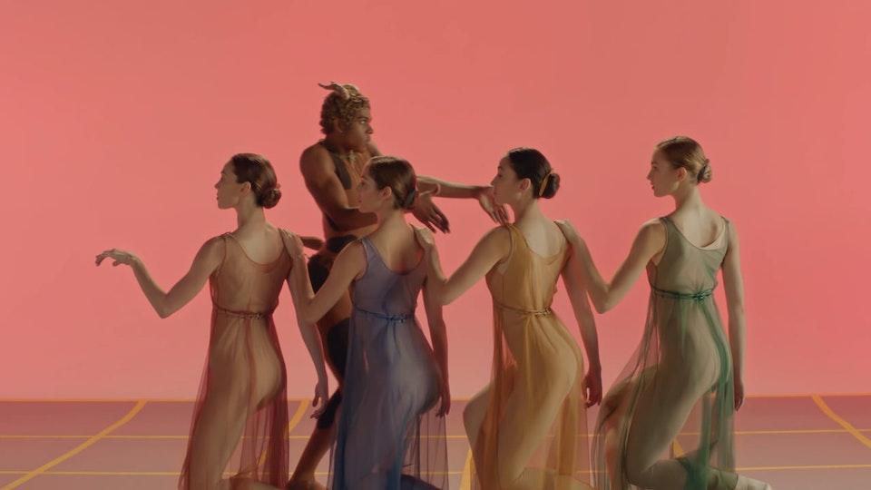 Stepan Kozlov - New York City Ballet Directors Cut