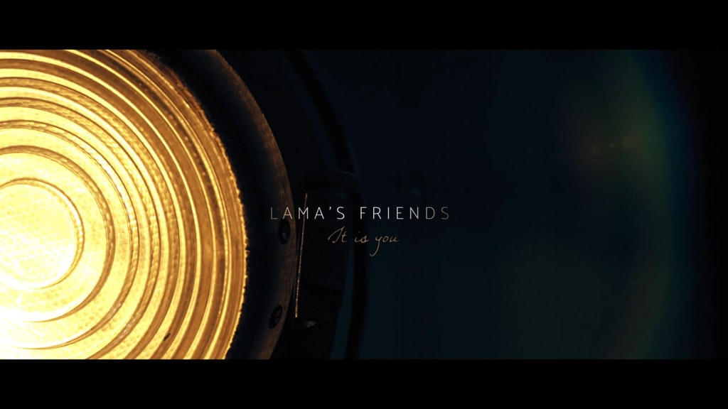 Llama's Friends – It Is You