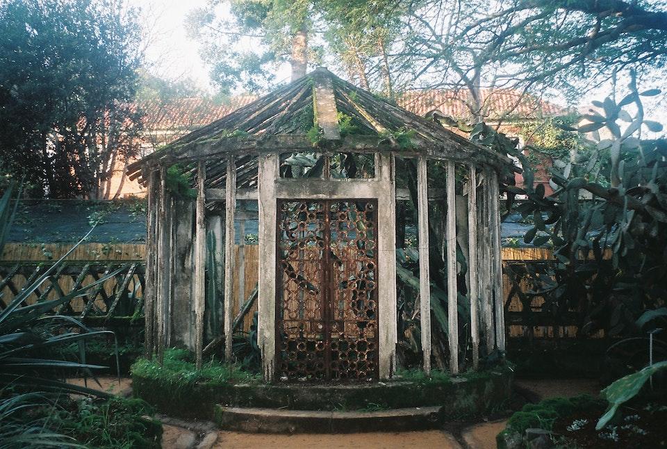 Botanical -