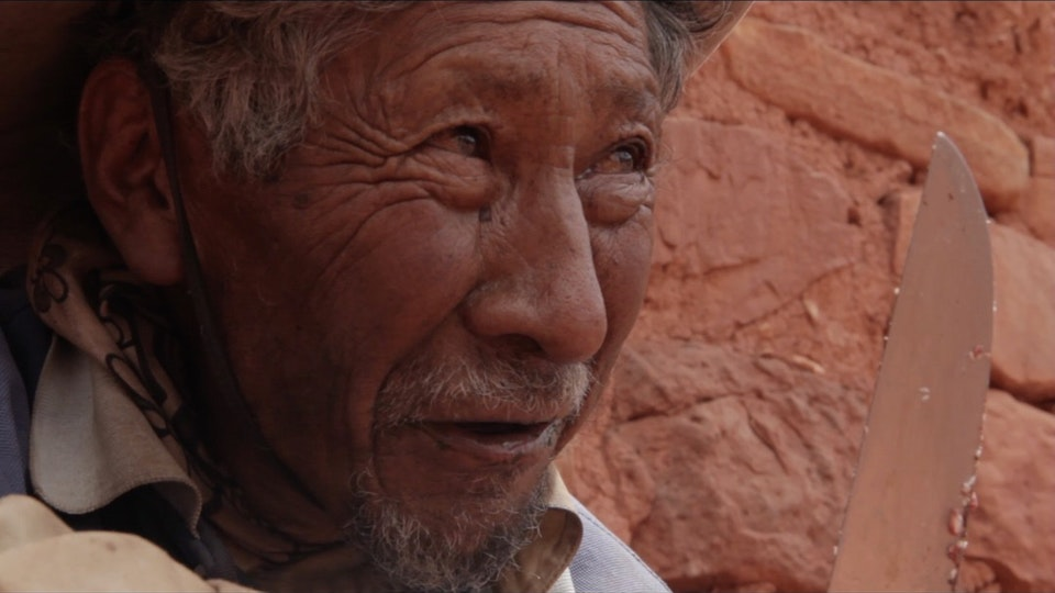 RUBEN ESPERANZA - Andean Journey - Documentary