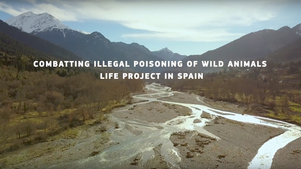 RUBEN ESPERANZA - LIFE Project - EU Environment