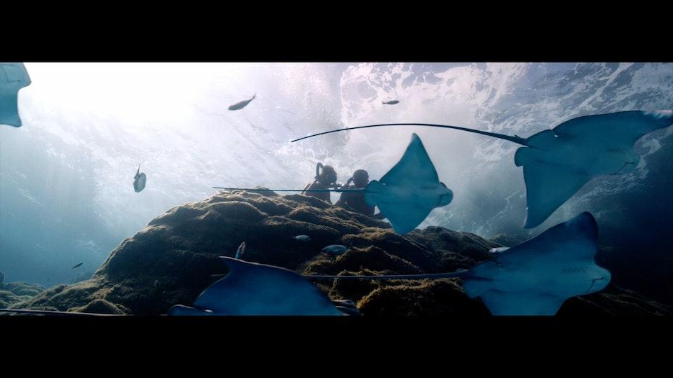 L'Odyssée |Trailer | JEROME SALLE
