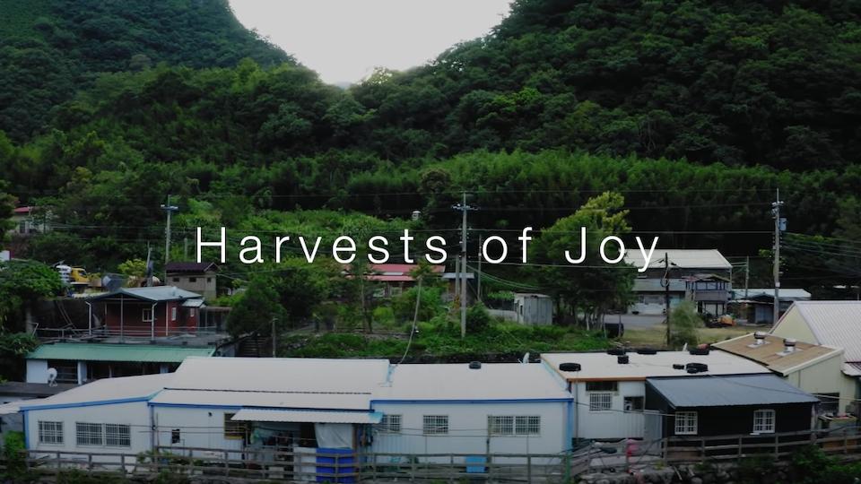 Harvests of Joy