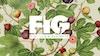 Figliulo & Partners Rebranding as FIG