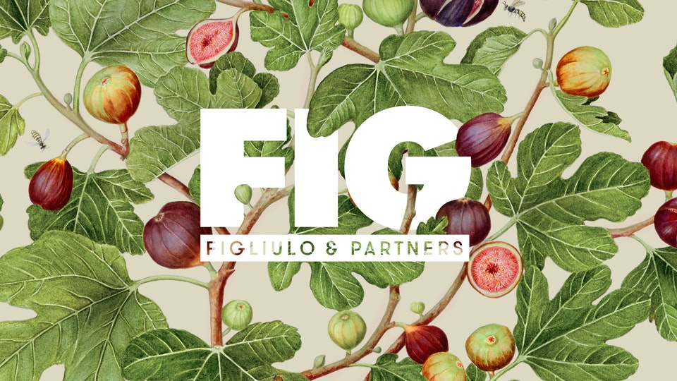Figliulo & Partners Rebranding as FIG