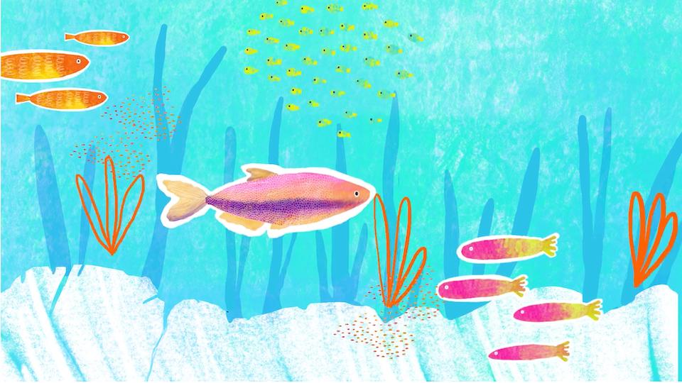 'Fishies' Short Film