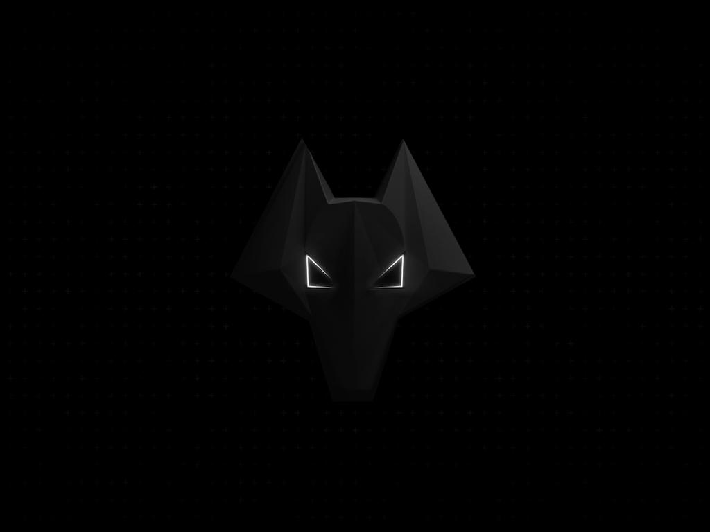 Wolves Kit Launch