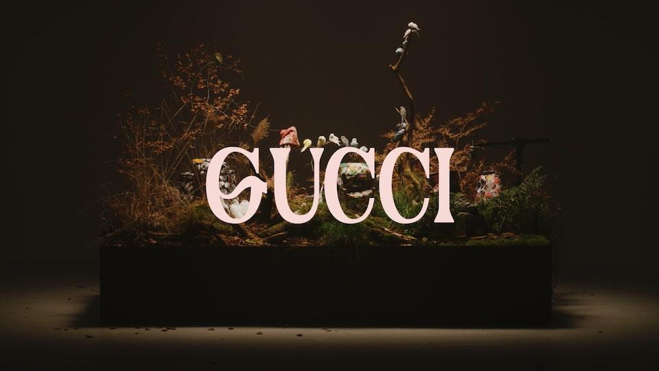 TheNorthFace x Gucci - Sweetestcape