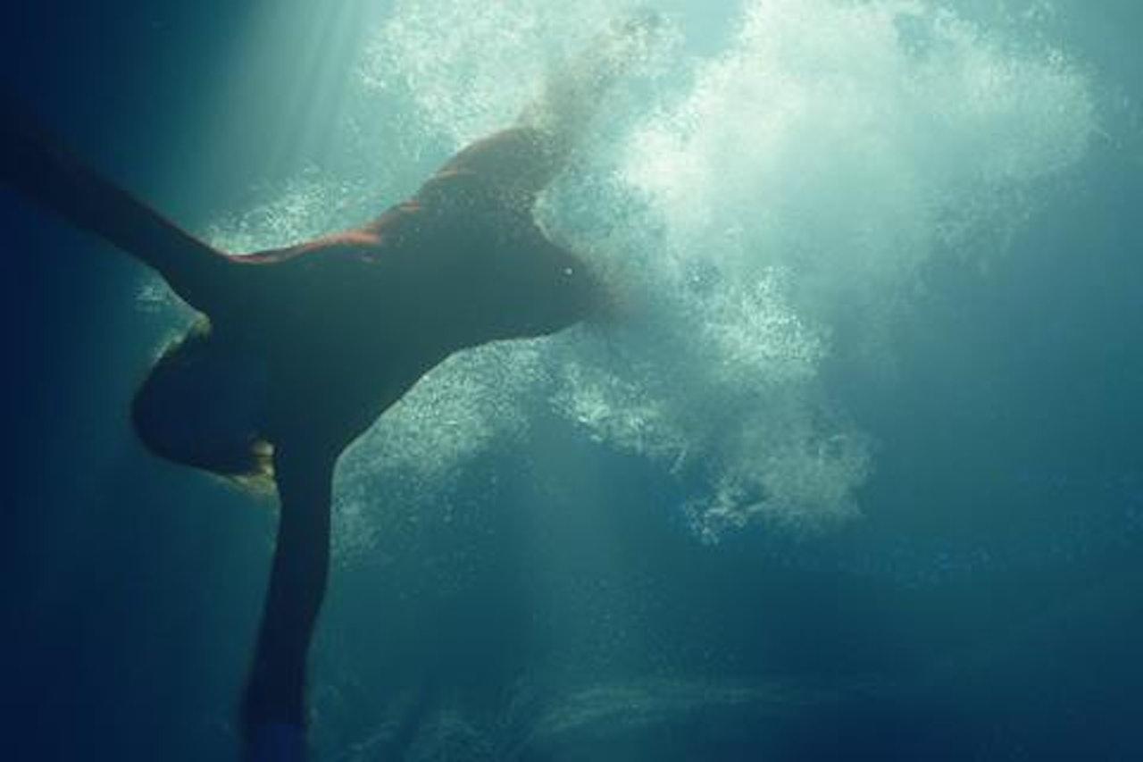 SEA FEVER -