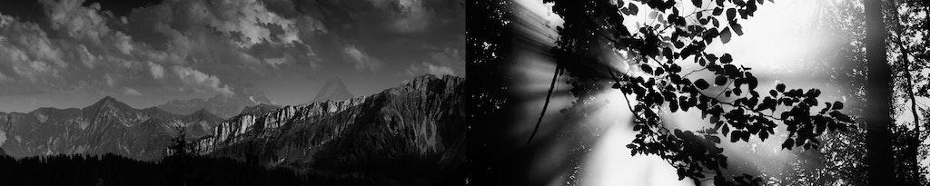 Emmentaler // Justin Stokes // Tuna Film