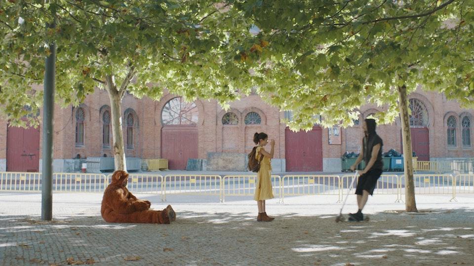 Take It Easy - Film, Photo and Videotape - TRISTEZA E ALEGRIA NA VIDA DAS GIRAFAS