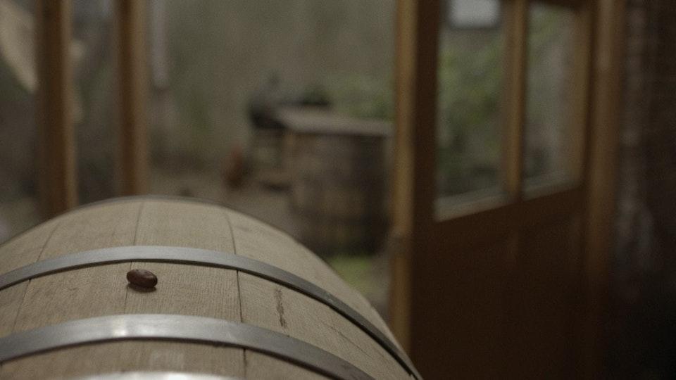 LINCOLN 'Hello, Again: Cacao Prieto'