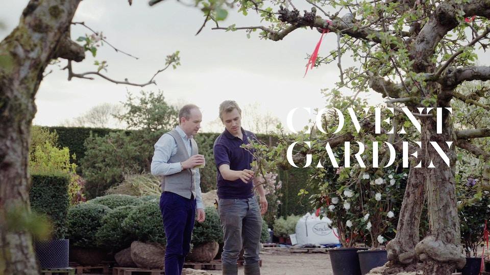 Covent Garden RHS Chelsea Flower Show