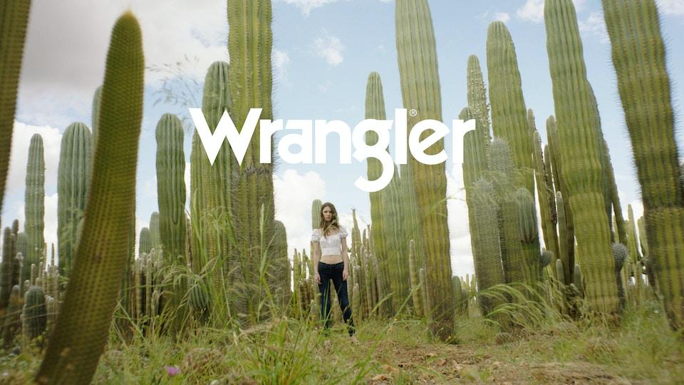 Wrangler AP - AW19 Shapekeeper