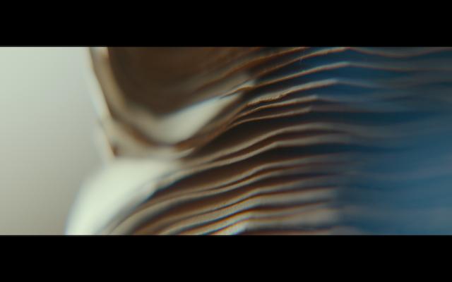 Screenshot 2020-10-24 at 12.31.03