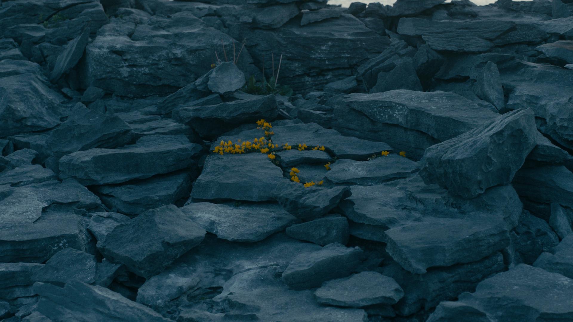 KYLE MACFADZEAN - Screen+Shot+2018-08-25+at+11.41.39