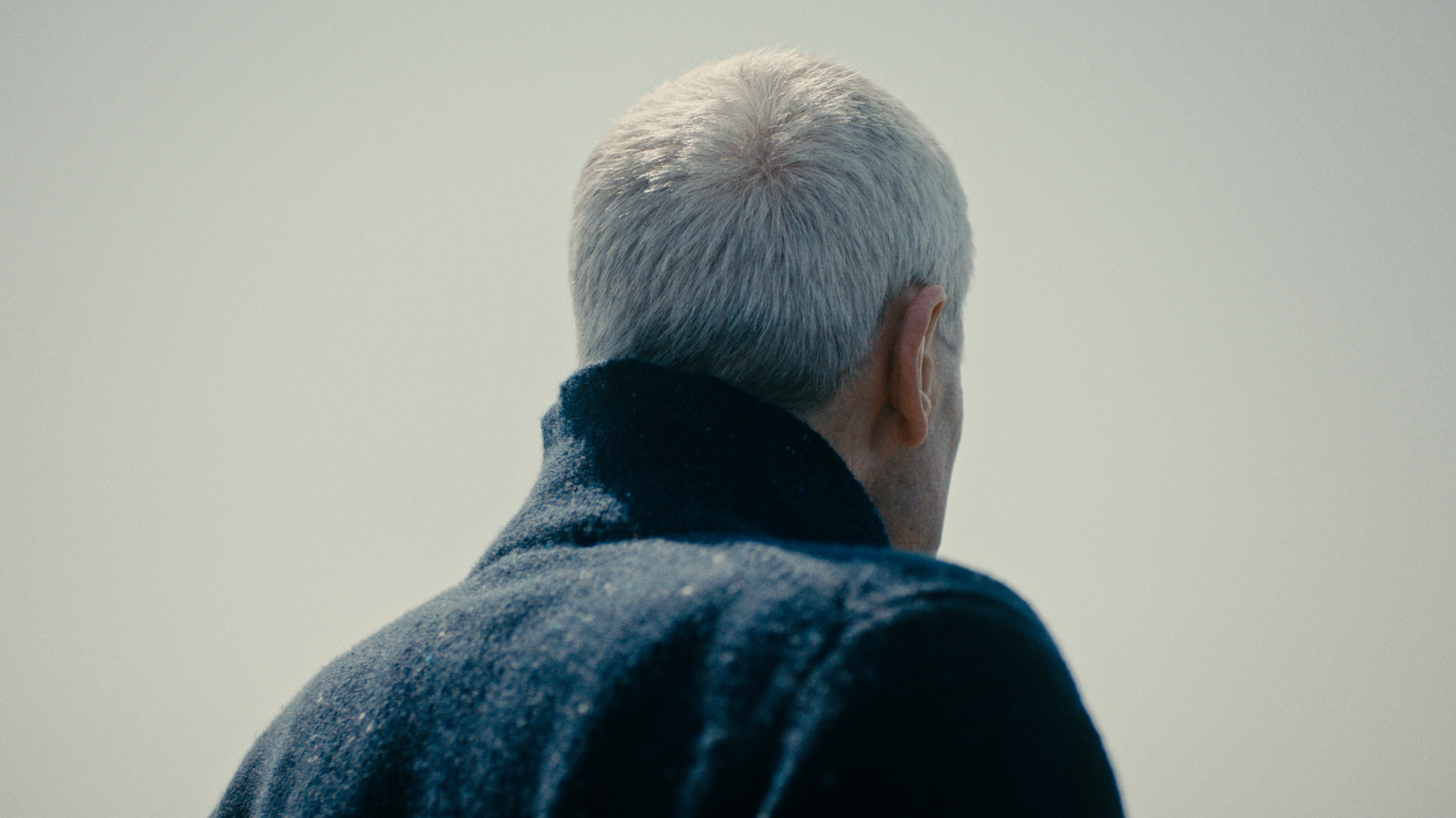 KYLE MACFADZEAN - Screen+Shot+2018-08-25+at+11.50.44