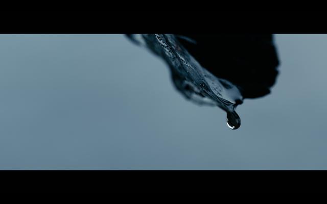 Screenshot 2020-09-22 at 16.49.58