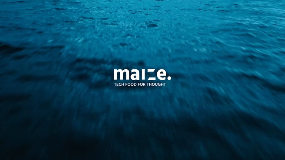 THIS IS MAIZE.