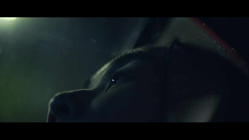 "After Hours ""Lovely Money"" 